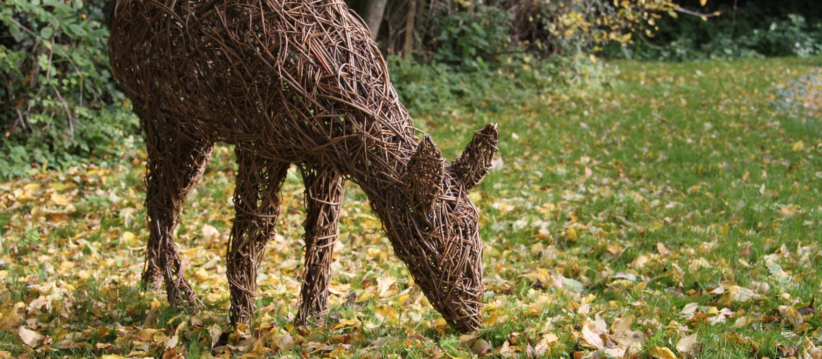Lark Valley Willow Willow Fences Sculptures Amp Living Willow